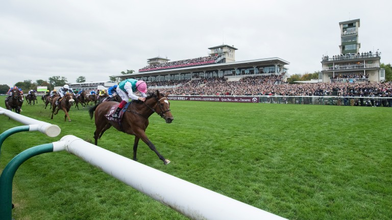 Enable: set to warm up for the Arc at Kempton