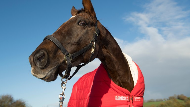 Denman relaxes during retirement after a career that saw him scale remarkable heights