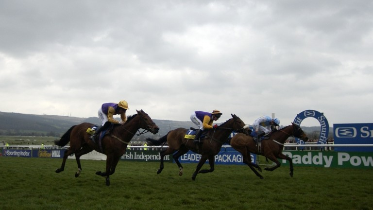 Harchibald (centre) is beaten just a neck by Hardy Eustace in the 2005 Champion Hurdle