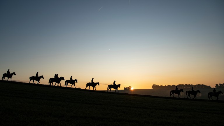 John Gillen: was based in Lambourn with trainer Peter Nelson