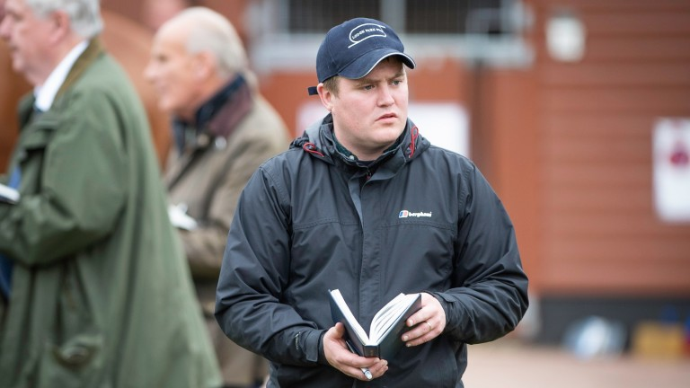 Barry Lynch: looking forward to seeing some progressive three-year-olds he bought