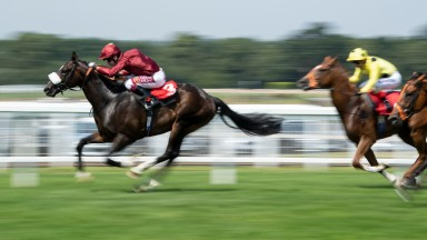 Kameko: a general 10-1 chance for the QIPCO 2,000 Guineas