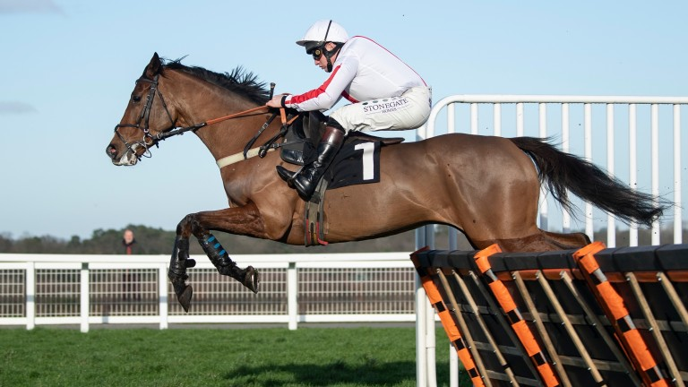 Goshen: missed Saturday's Coral Hurdle following an unsatisfactory scope and does not feature among the Fighting Fifth Hurdle entries