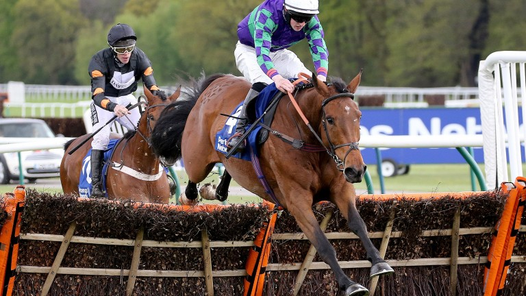 War Sound: beat experienced hurdlers to score in Grade 3 company at Haydock in 2015