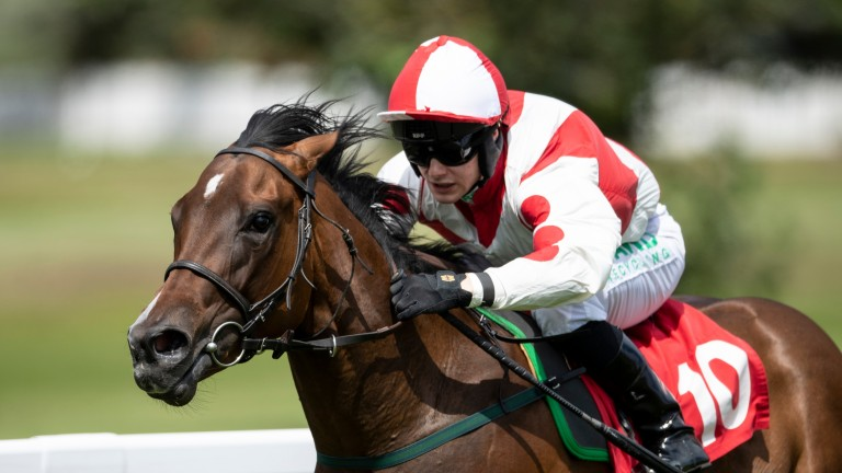 Liberty Beach: a homegrown success for Mickley Stud and Philip Wilkins