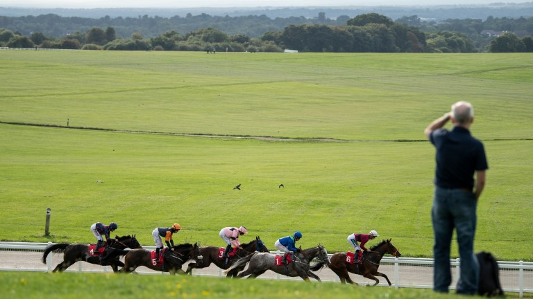 Walkers not welcome: the public right of way on Epsom Downs will be suspended for 24 hours on Tuesday in order to comply with the requirements of racing behind closed doors