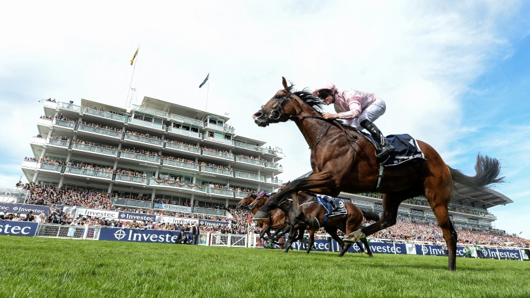Investec derby betting app sports betting contests