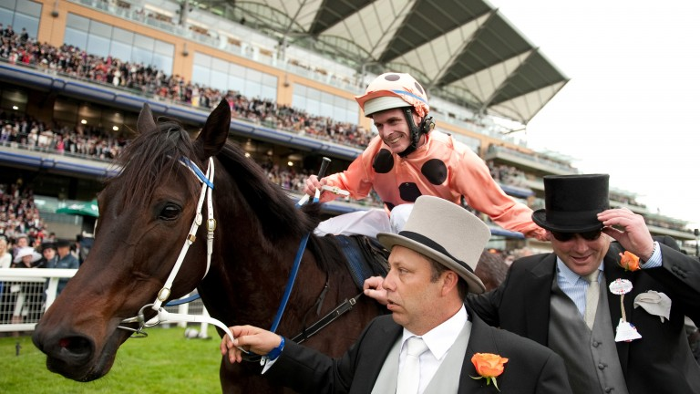 Black Caviar after winning at Royal Ascot - Ole Kirk is out of her sister