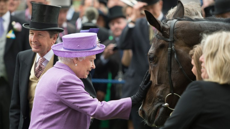 The Queen greets Estimate after the star filly had won the 2013 Gold Cup at Royal Ascot