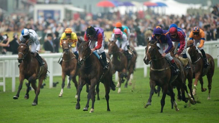 Estimate and Ryan Moore cross the line in front after a titanic tussle with Simenon (right)