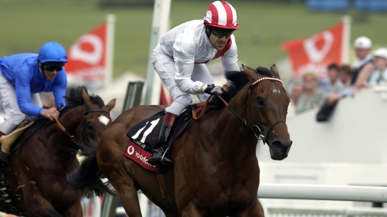 Darryll Holland steered Warrsan to success in the 2004 Coronation Cup at Epsom