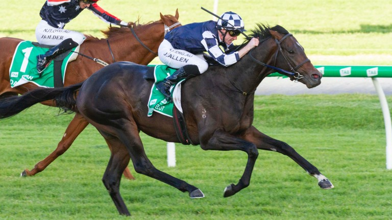 Russian Camelot is pushed out by John Allen to win the Australian Derby