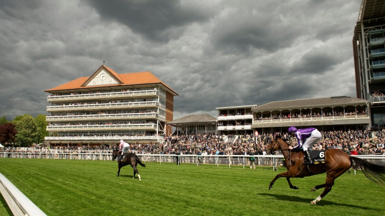 York''s Ebor festival will be one of the unmissable summer highlights