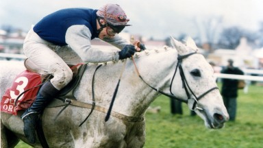 No2 Desert Orchid on his way to victory in the 1990 King George VI chase at Kempton Park 26th December 1990Owner Richard Burridge Trainer David Elsworth Jockeys Colin Brown, Simon Sherwood, Richard Dunwoody Record (jumps) 34 wins from 71 startsCareer high