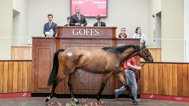 A lot brings £100,000 at last year's Spring Store Sale