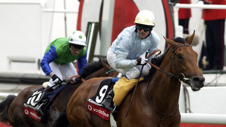 """Derby winner North Light: """"He was so easy, the only one of the three I was able to enjoy"""""""