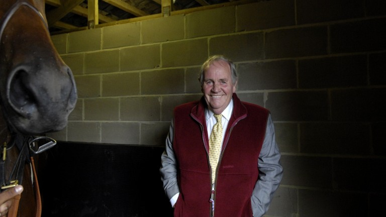 Richard Hannon snr: nearly walked away from buying Canford Cliffs