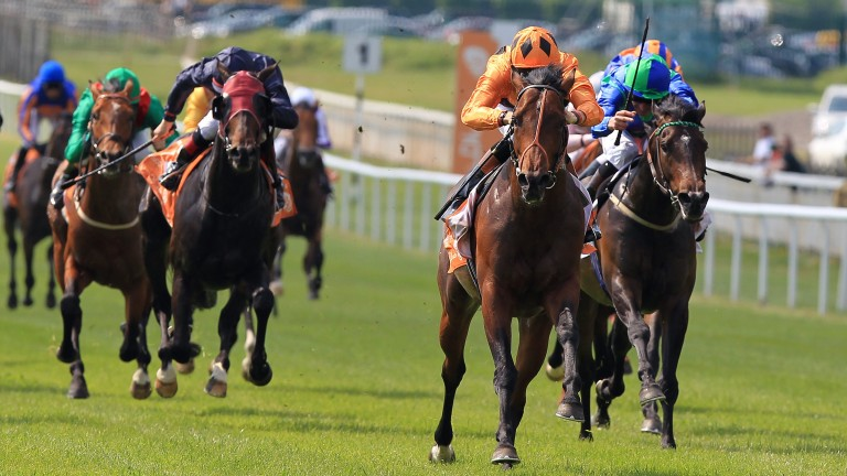 Ten years ago: Canford Cliffs surges clear to win the Irish 2,000 Guineas
