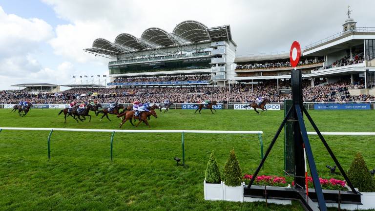 Newmarket Classics: the Qipco 1,000 and 2,000 Guineas could be run for £250,000 each