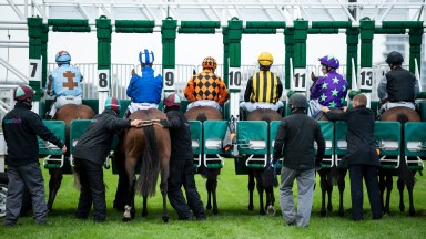 Stalls: some concerns about the start of races when racing returns