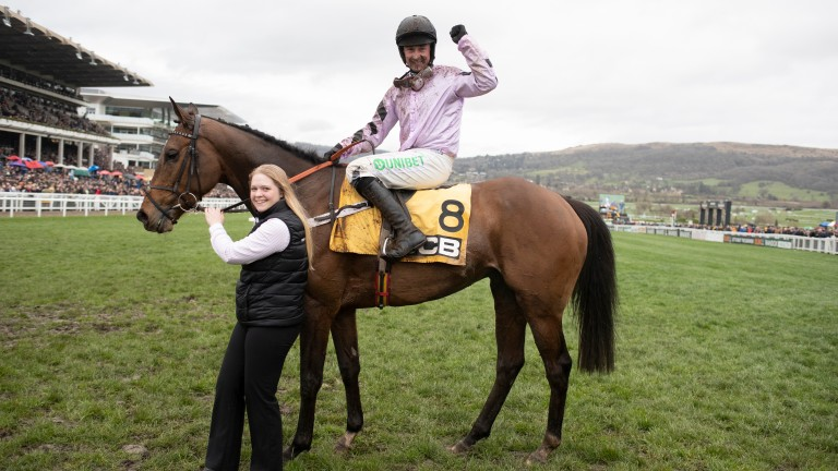 "Nicky Henderson on Pentland Hills: ""I'd imagine he's going to have to take a year out"""