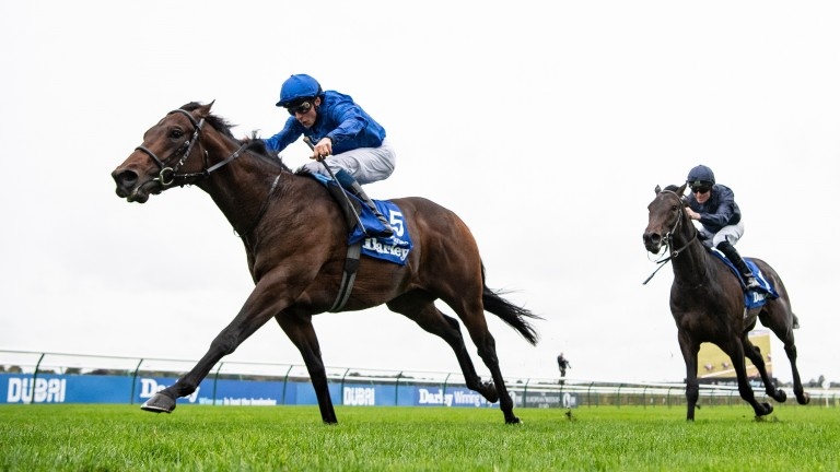 Pinatubo: can he return to winning ways in the St James's Palace Stakes?