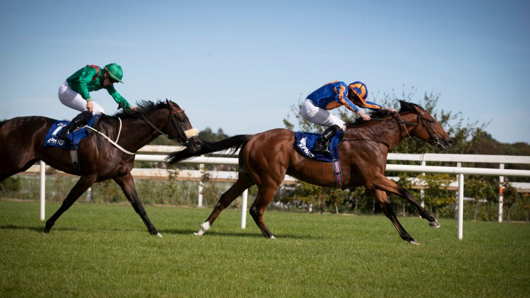 Mogul wins the Group 2 KPMG Champions Juvenile Stakes at Leopardstown in September