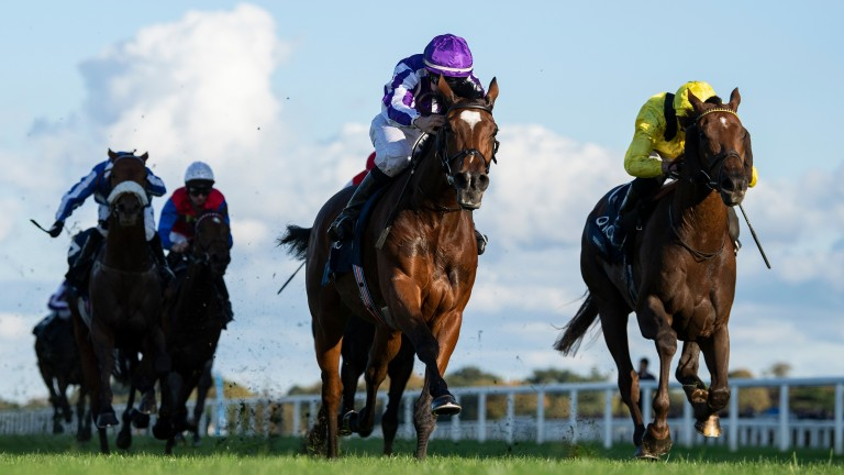 Magical (centre) beats Addeybb (right) in last year's Champion Stakes