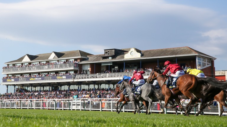 Ayr: set to stage racing on June 22