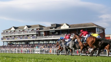 Ayr: to stage racing on June 22