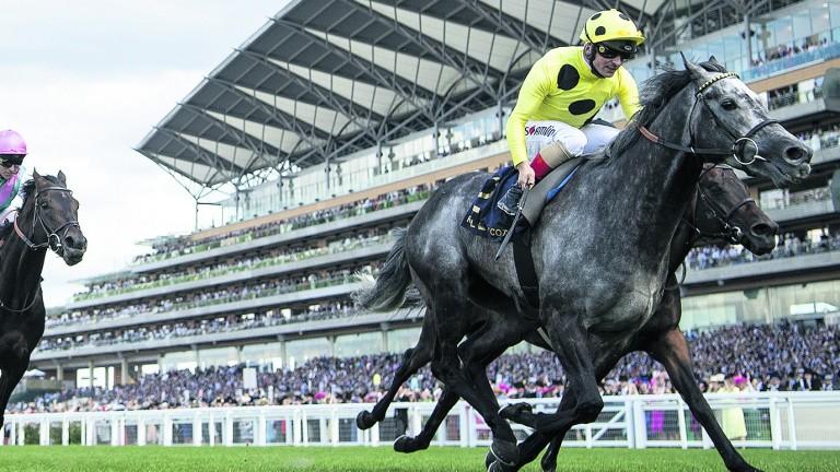 Defoe: seeking back-to-back wins in the Hardwicke Stakes