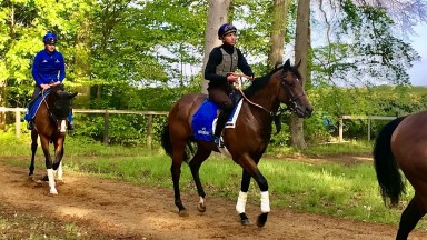 Noble Dynasty and James Doyle after exercise