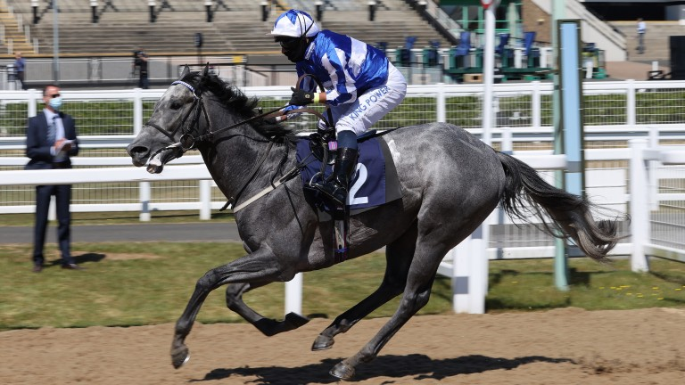 Art Power: ran out an impressive winner at Newcastle on Monday