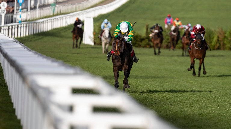 Easysland wins the Cross County Chase at the Cheltenham Festival