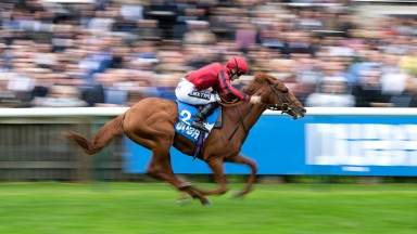 Max Vega wins the Zetland Stakes at Newmarket