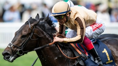 A'Ali: three-time Group 2 winner in action at Newmarket