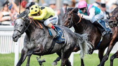 Defoe: on course for Group 1 clash at Newmarket on Friday