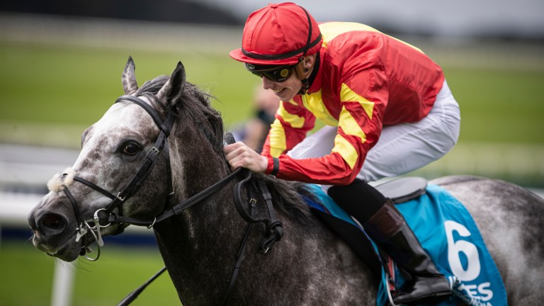 Curragh: boasts top class racing on Saturday