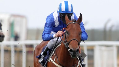 Maydanny wins at Yarmouth and looks a super prospect for the future
