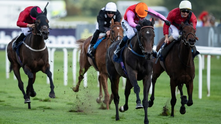 JRA Sceptre Stakes winning duo Jim Crowley and Breathtaking Look are reunited at Newmarket on Friday