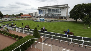 NEWMARKET, ENGLAND - JUNE 04: A general view of the horses and jockeys in the parade ring before the Heed Your Hunch At Betway EBF Stallions Maiden Fillies' Stakes (Div 2) at Newmarket Racecourse on June 04, 2020 in Newmarket, England. (Photo by David Dav