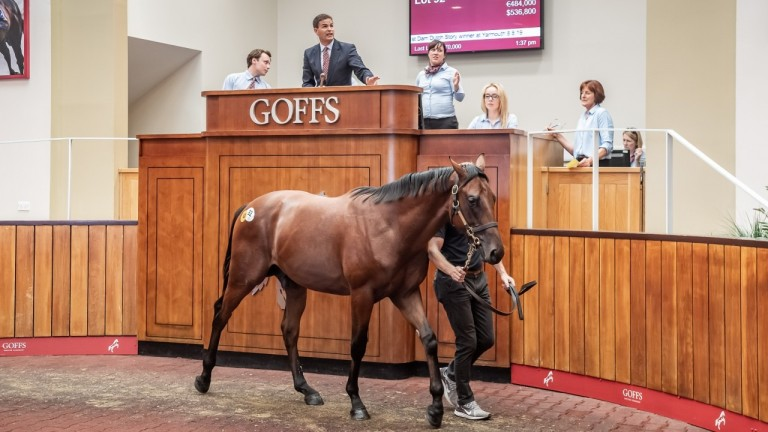 The record-breaking Kingman colt sells to Coolmore for £440,000 at Goffs UK