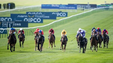 Who will succeed Hermosa on the Qipco 1,000 Guineas roll of honour?