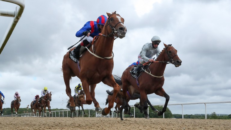 Nayef Road beats stablemate Milderberger in the Group 3 Sagaro Stakes