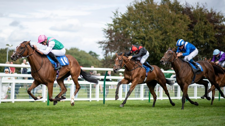 Snow Shower bids to turn a Salisbury maiden win into Classic trial success at Newmarket on Sunday