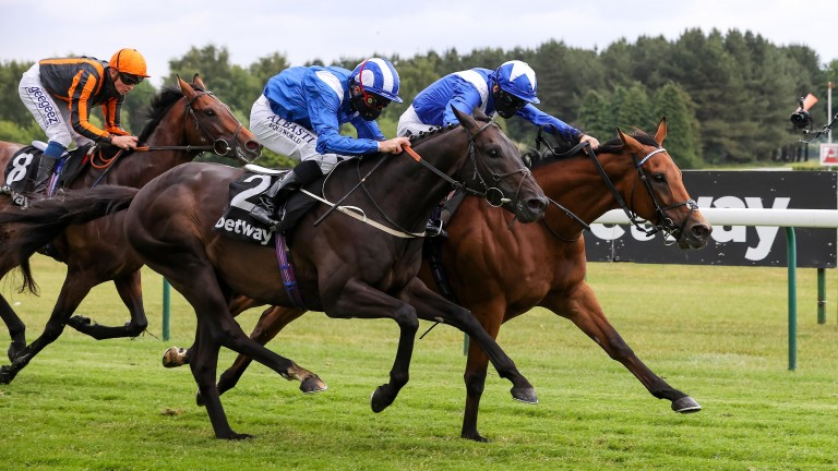 Elarqam (near side): can he give a further boost to the Brigadier Gerard form?