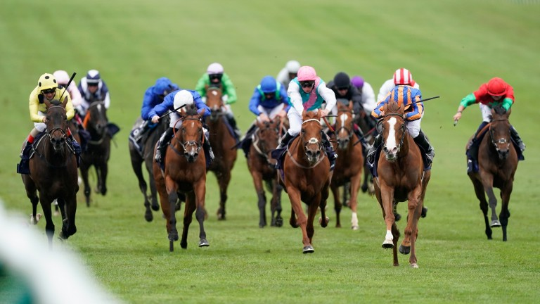 Love, with her big white face, gallops clear at Newmarket