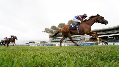 NEWMARKET, ENGLAND - JUNE 07: Ryan Moore riding Love win The Qipco 1000 Guineas Stakes at Newmarket Racecourse on June 07, 2020 in Newmarket, England. (Photo by Alan Crowhurst/Getty Images)