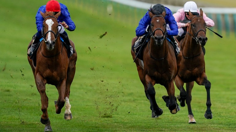 Modern News (red cap) gets the better of stablemate Noble Dynasty (black cap) at Newmarket