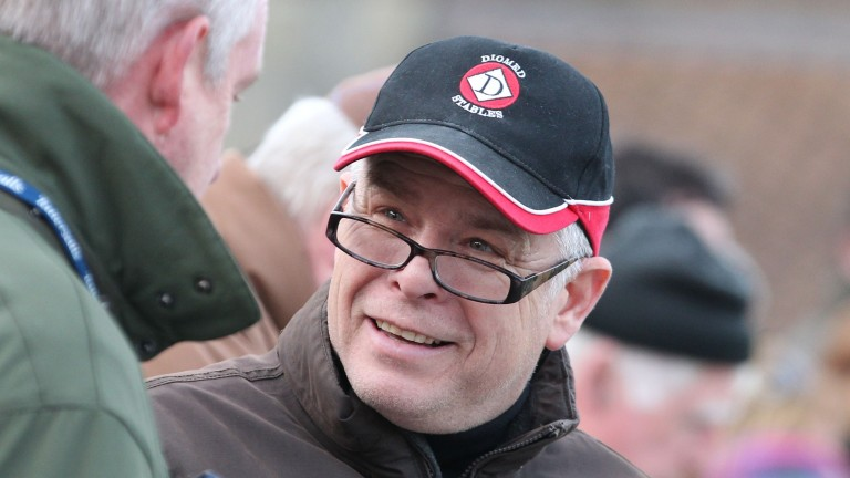 Stuart Williams: trained the dams of Love and Dream And Do